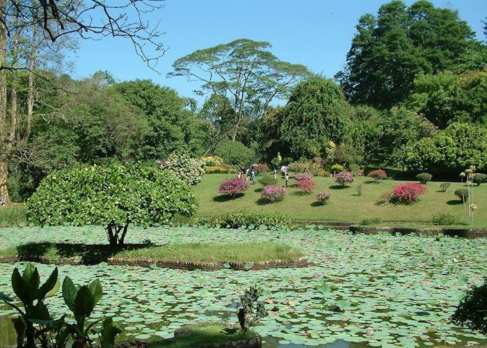 Botanical Gardens, Kandy