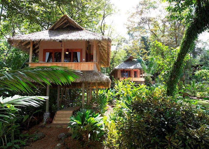 Cabinas, Copa de Arbol Beach & Rainforest Resort, Copa de Arbol