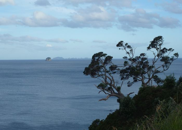 View from Te Pare Reserve, Hahei, Coromandel Peninsula,New Zealand
