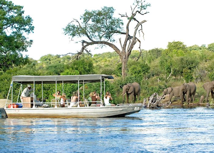 Boat safari from Chobe Chilwero