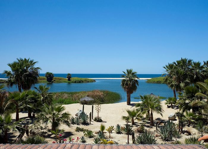 View from Posada La Poza, Todos Santos