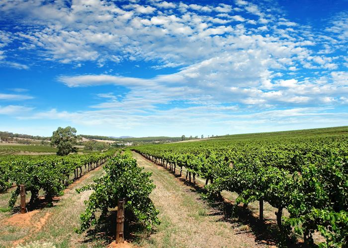 The Hunter Valley, New South Wales