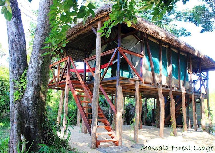 Masoala Forest Lodge, Masoala National Park
