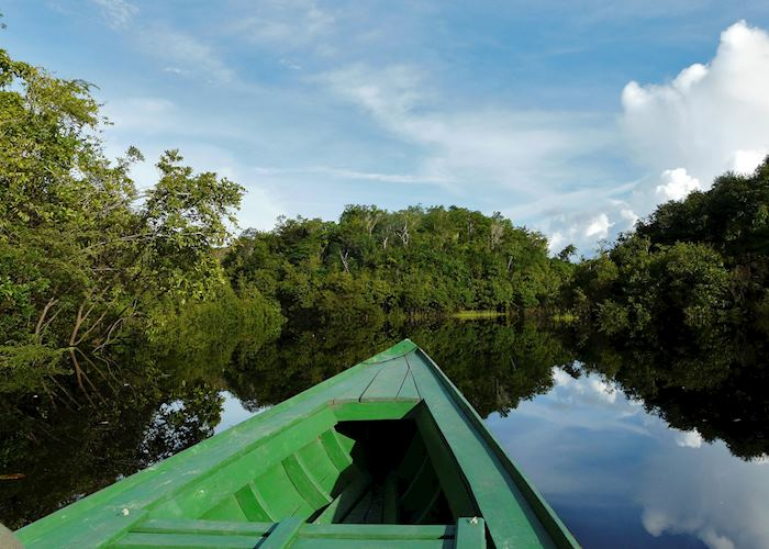 Travelling through the Amazon Rainforest