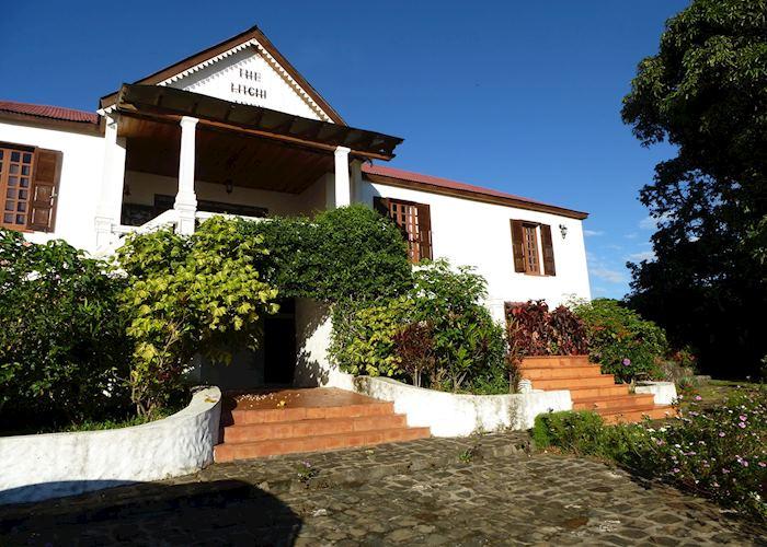 The Litchi Tree,Joffreville (Ambohitra)