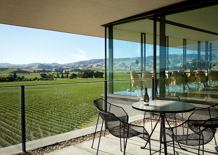 Brancott Estate Vineyard, Blenheim and the Winelands, New Zealand
