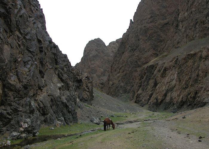 Yolyn Am Canyon, Gobi