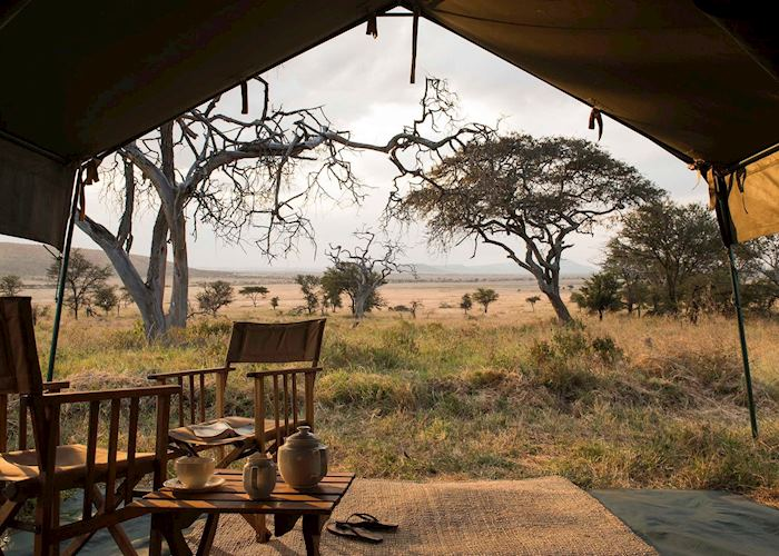 Nomad Serengeti Safari Camp,Serengeti National Park