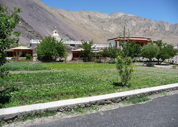 Uley Ethnic Resort,Alchi