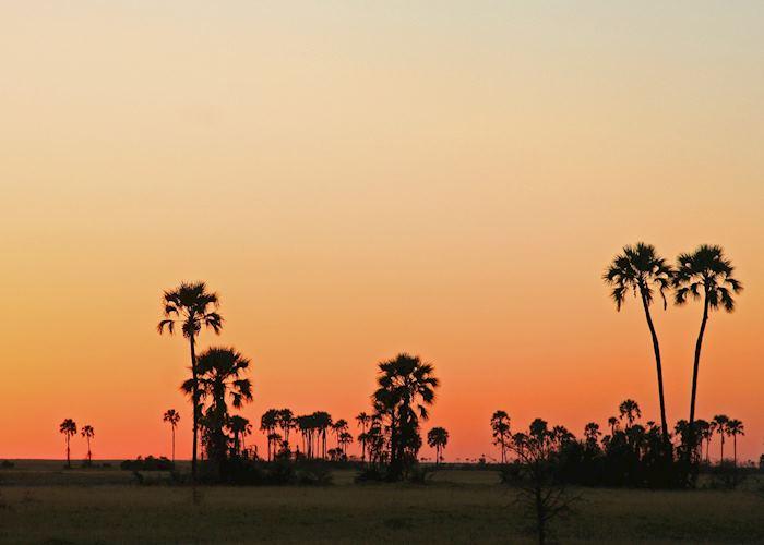 Sunset in the Makgadikgadi Pans