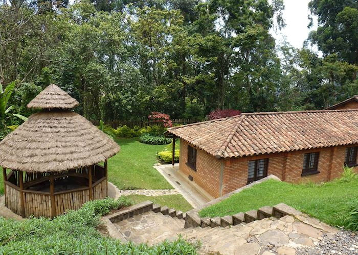 Gisakura Guest House,Nyungwe Forest National Park