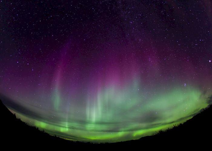 Aurora Borealis in the Yukon Territory