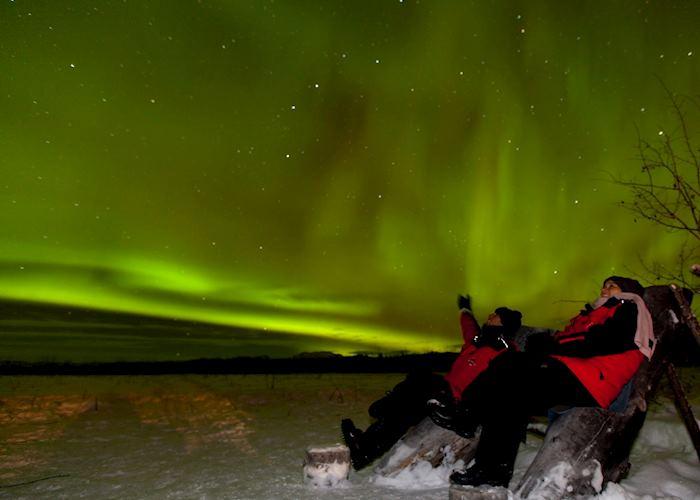 The Yukon night sky