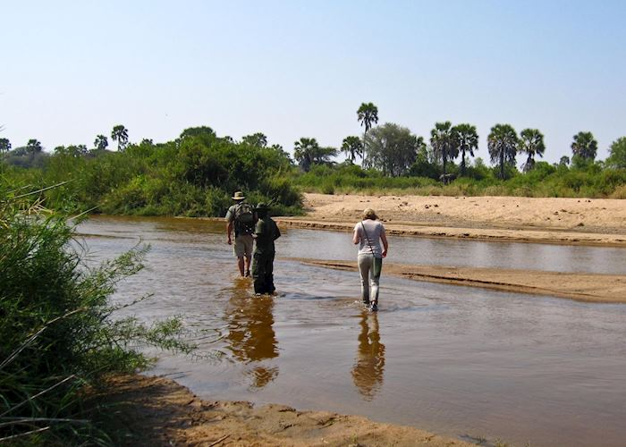 Walking safari with Kichaka Expeditions, Ruaha National Park