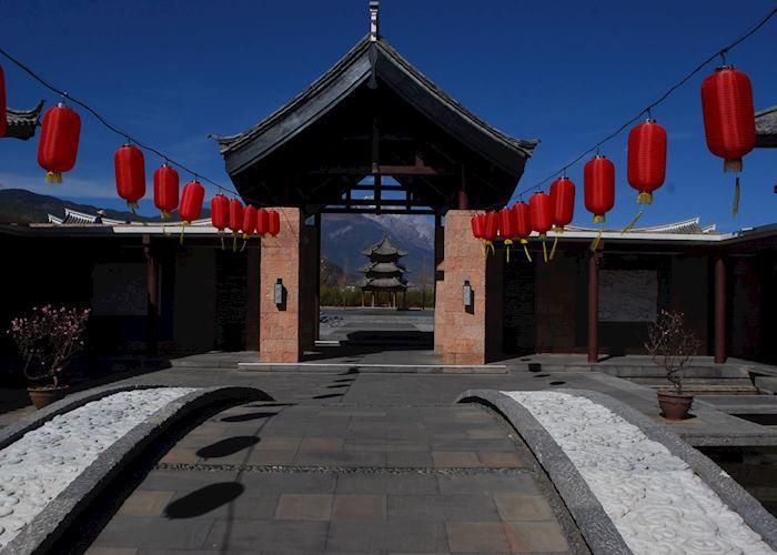 Lijiang Banyan Tree, Lijiang