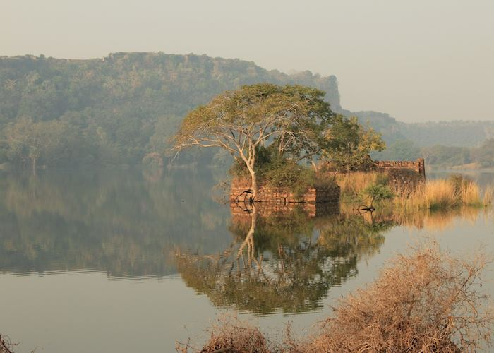 Ranthambhore Fort on the hill