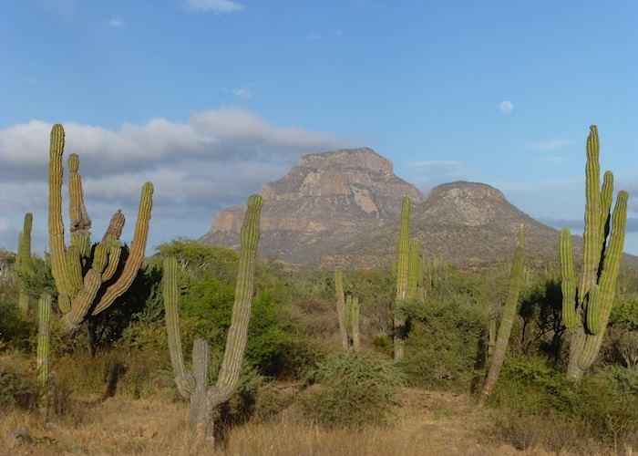 Baja California's, 'Monument Valley', Mexico