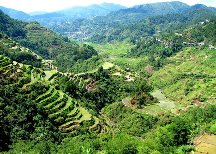 Valley view of the Banaue rice terraces