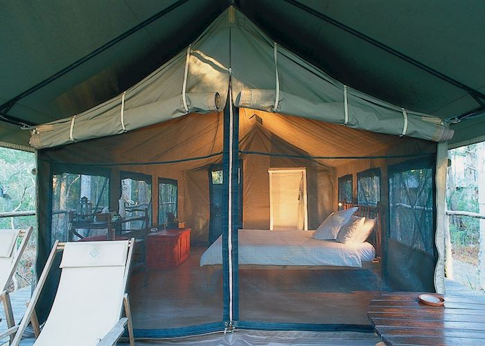 Safari tent, Paperbark Camp, Jervis Bay