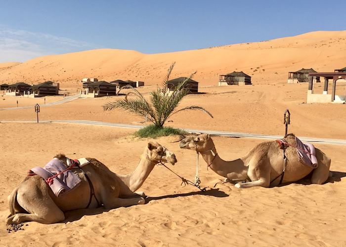 1000 Nights Desert Camp, Wahiba Sands