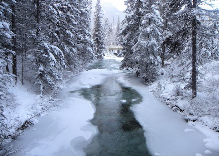 Ice walk through Johnston Canyon, Banff