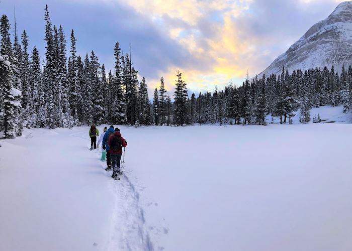 First Tracks Snowshoe Adventure , Banff