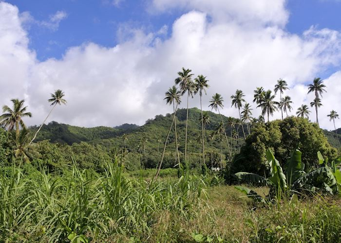 Mountains of Rarotonga