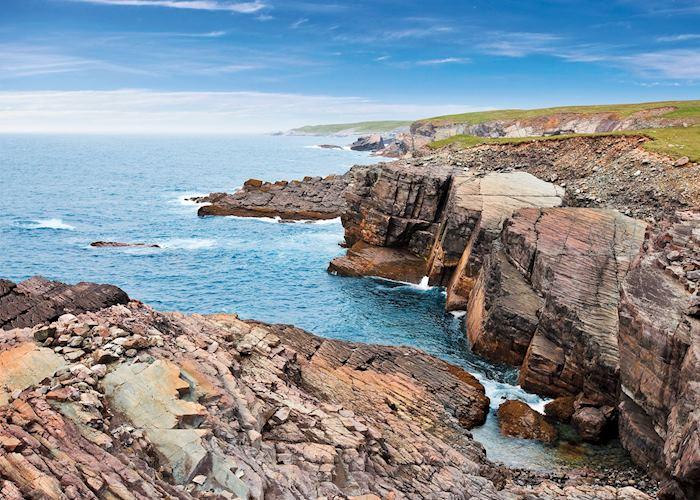 Southern coasts of Newfoundland