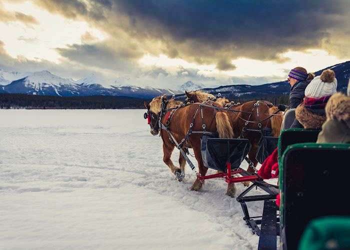 Sleigh ride from the Lake Louise Winterland tour in the Rocky Mountains