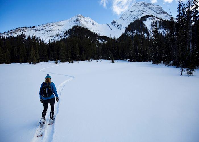 Snowshoeing in Jasper National Park