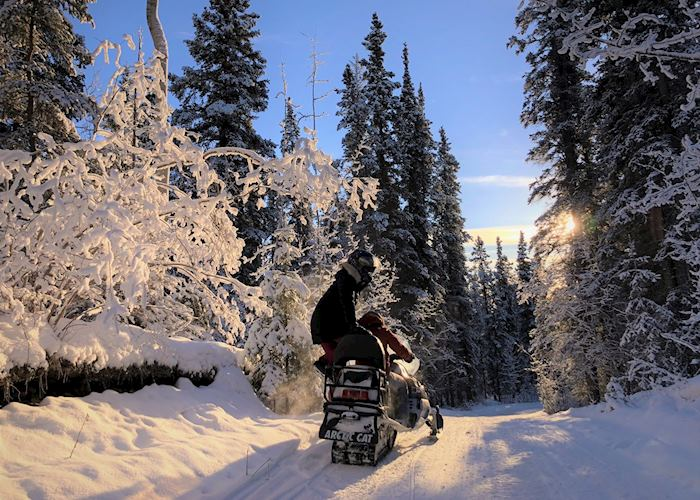 Scenery on snowmobiling experience near Inn on the Lake, Whitehorse