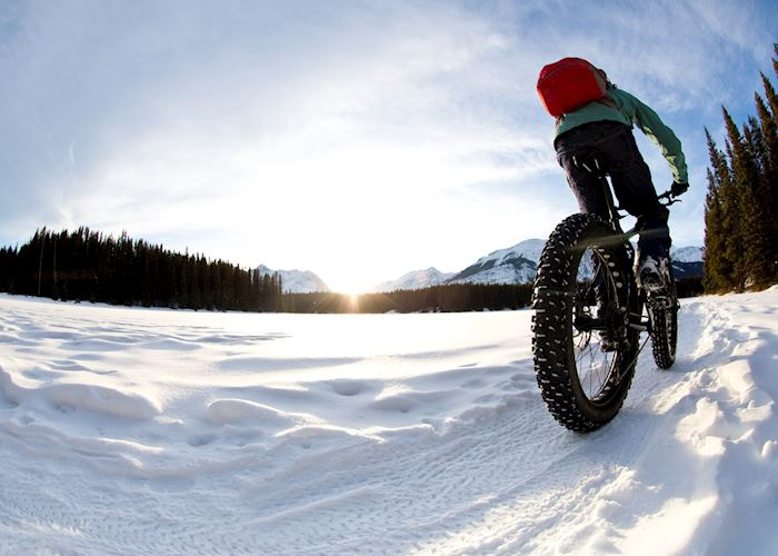 Guided Fat Bike Tour , Mont Tremblant