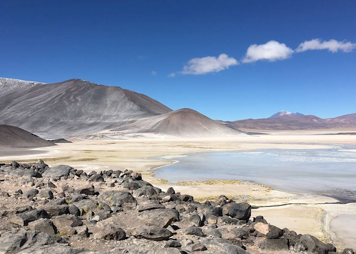 Lagunas Altiplanicas, Atacama Desert