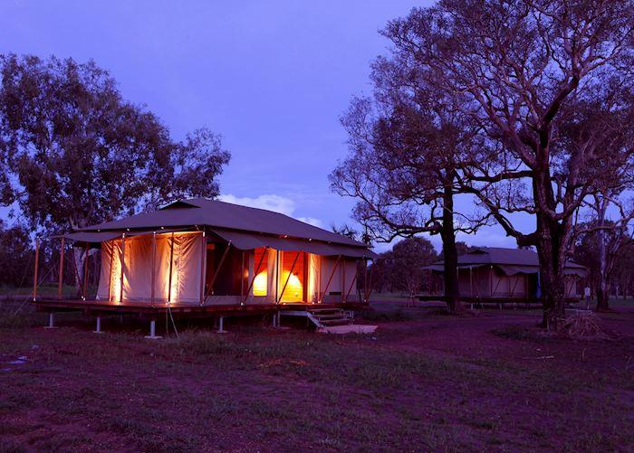 Safari tent, Wildman Wilderness Lodge, Wildman Wilderness Lodge