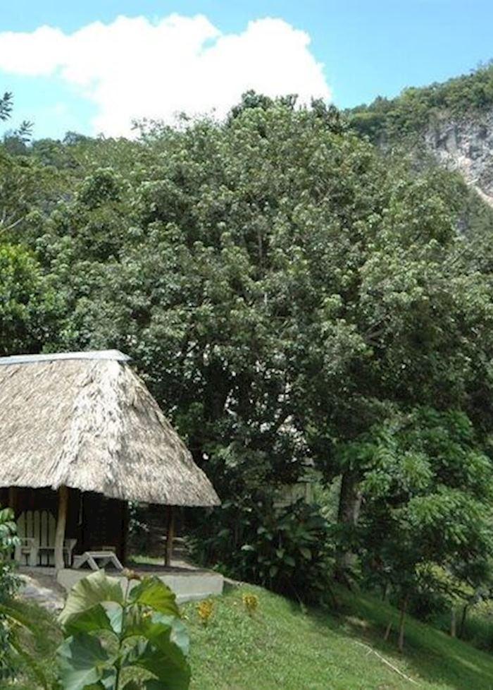 Cabana, Black Rock Lodge