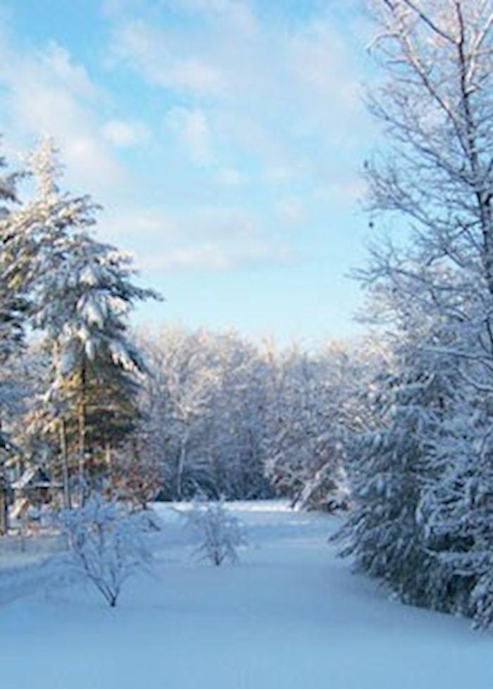 Jackson, New Hampshire, USA