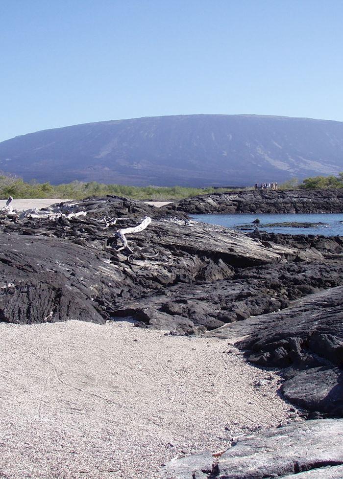 Fernandina, Galapagos Islands, Ecuador