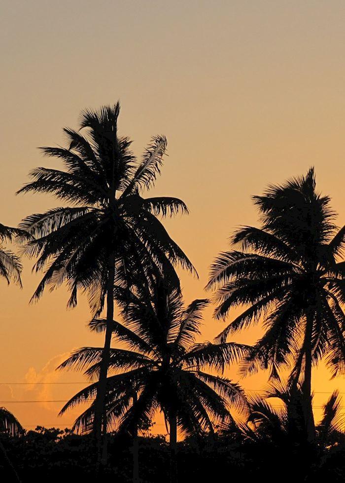 Sunset, Ambergris Caye