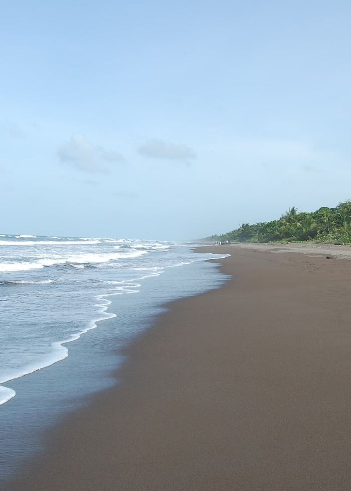 Coastline, Tortuguero National Park, Costa Rica