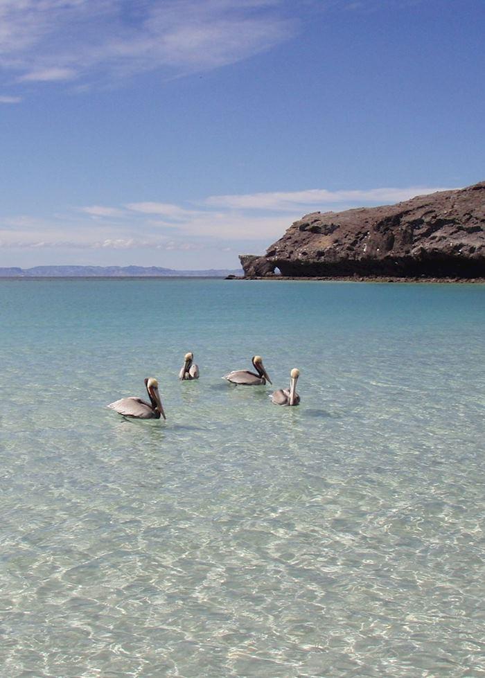 Islands close to La Paz, Baja California