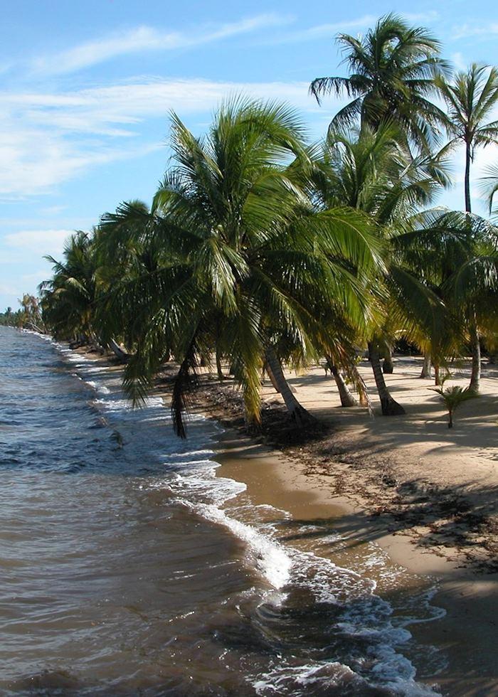 Coastal Belize