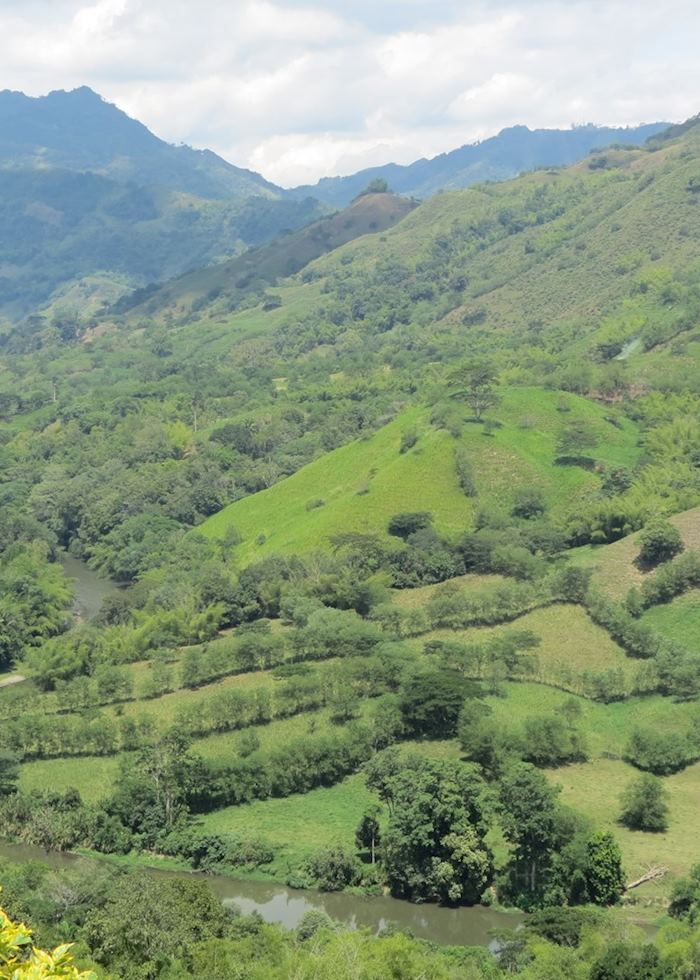 Beautiful views of the coffee region