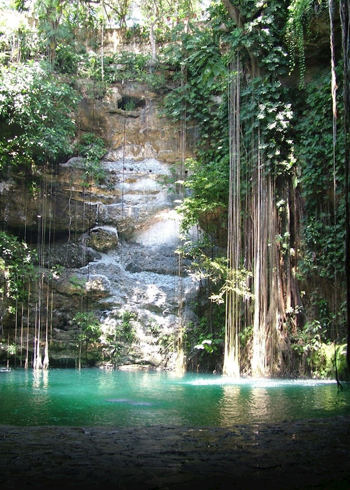 Cenote, Yucatan Peninsula