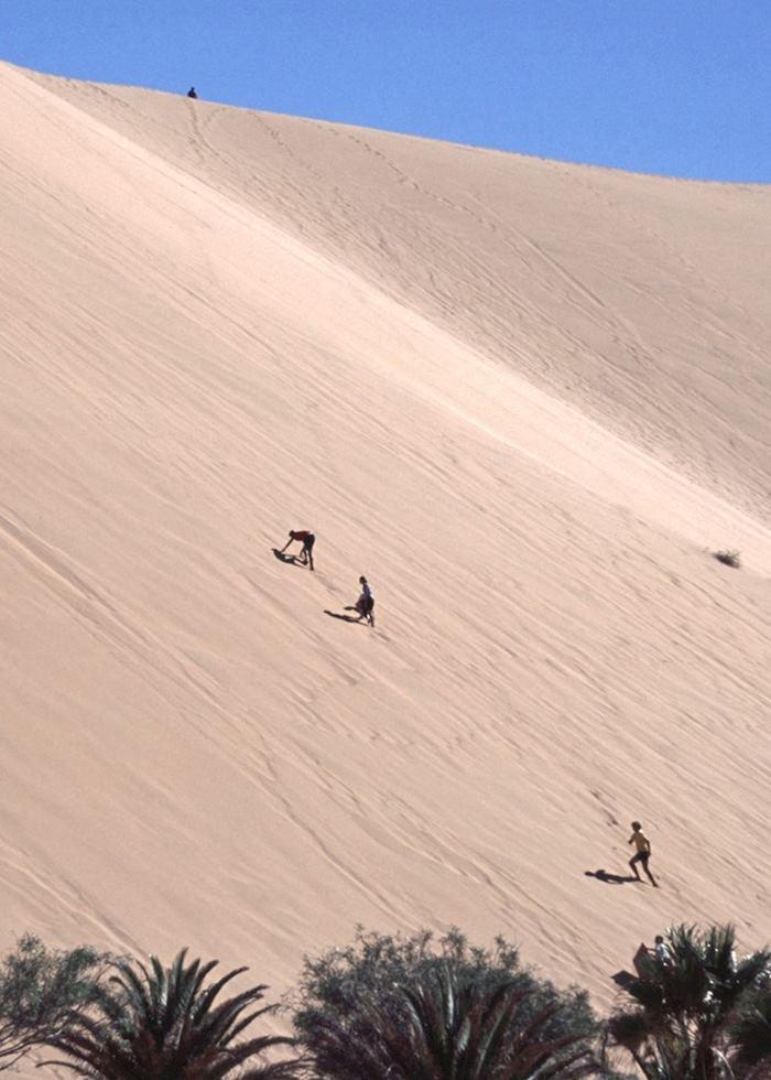 Dune boarding near Swakopmund