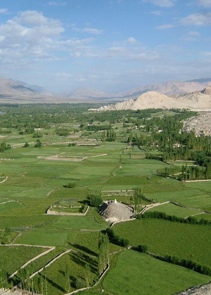 Ladakhi landscape