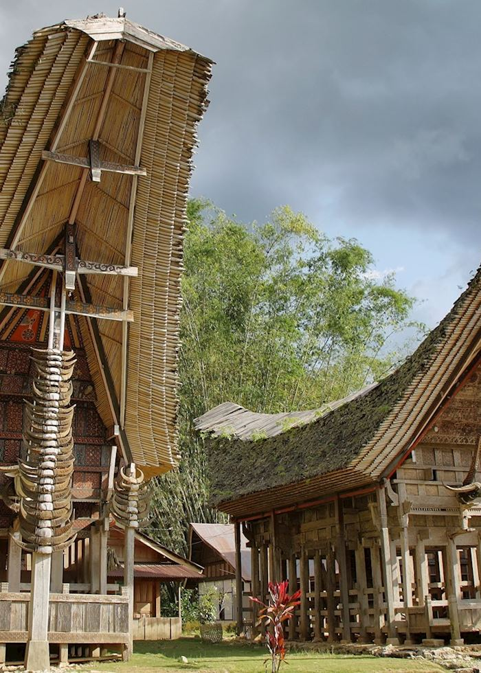 Traditional village houses, Tana Toraja, Indonesia