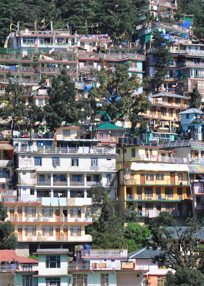 Houses in McLeod Ganj, near Dharamshala