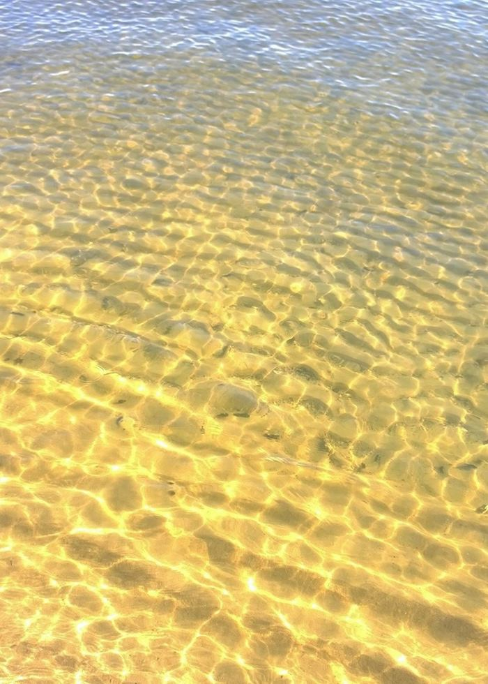 Shallow & clear ocean waters