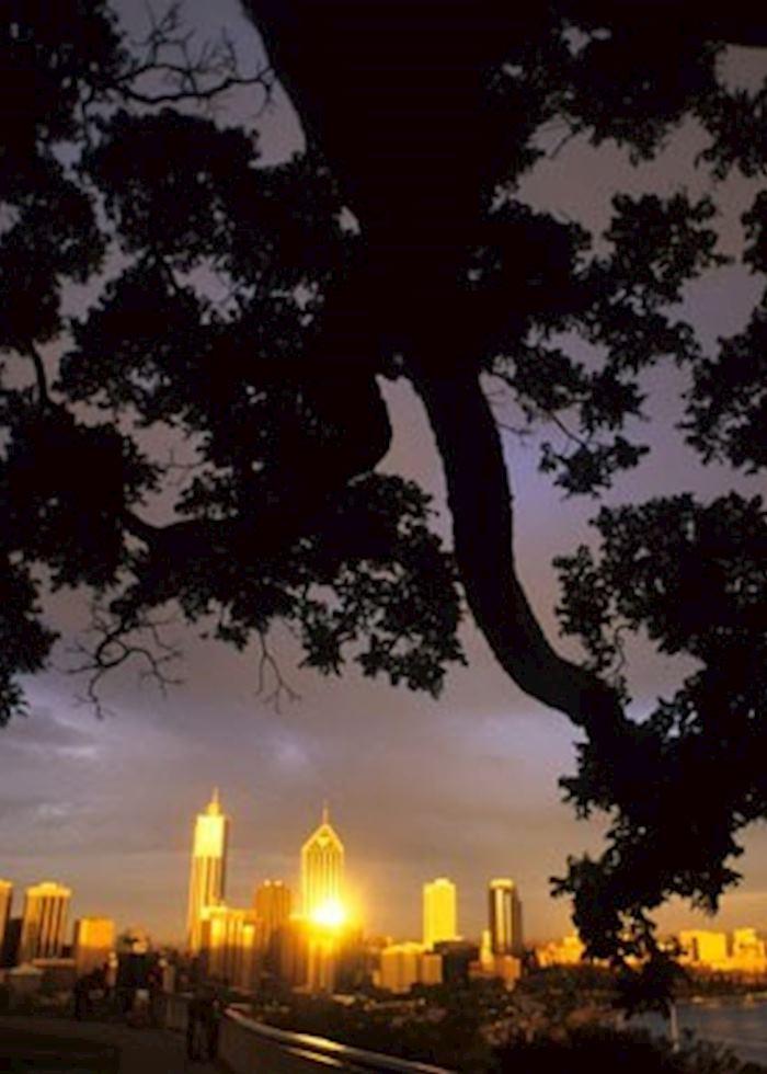 Night views from Kings Park