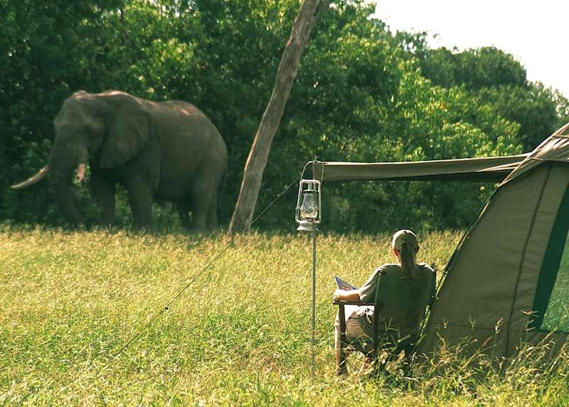 Mobile camping safaris in Botswana